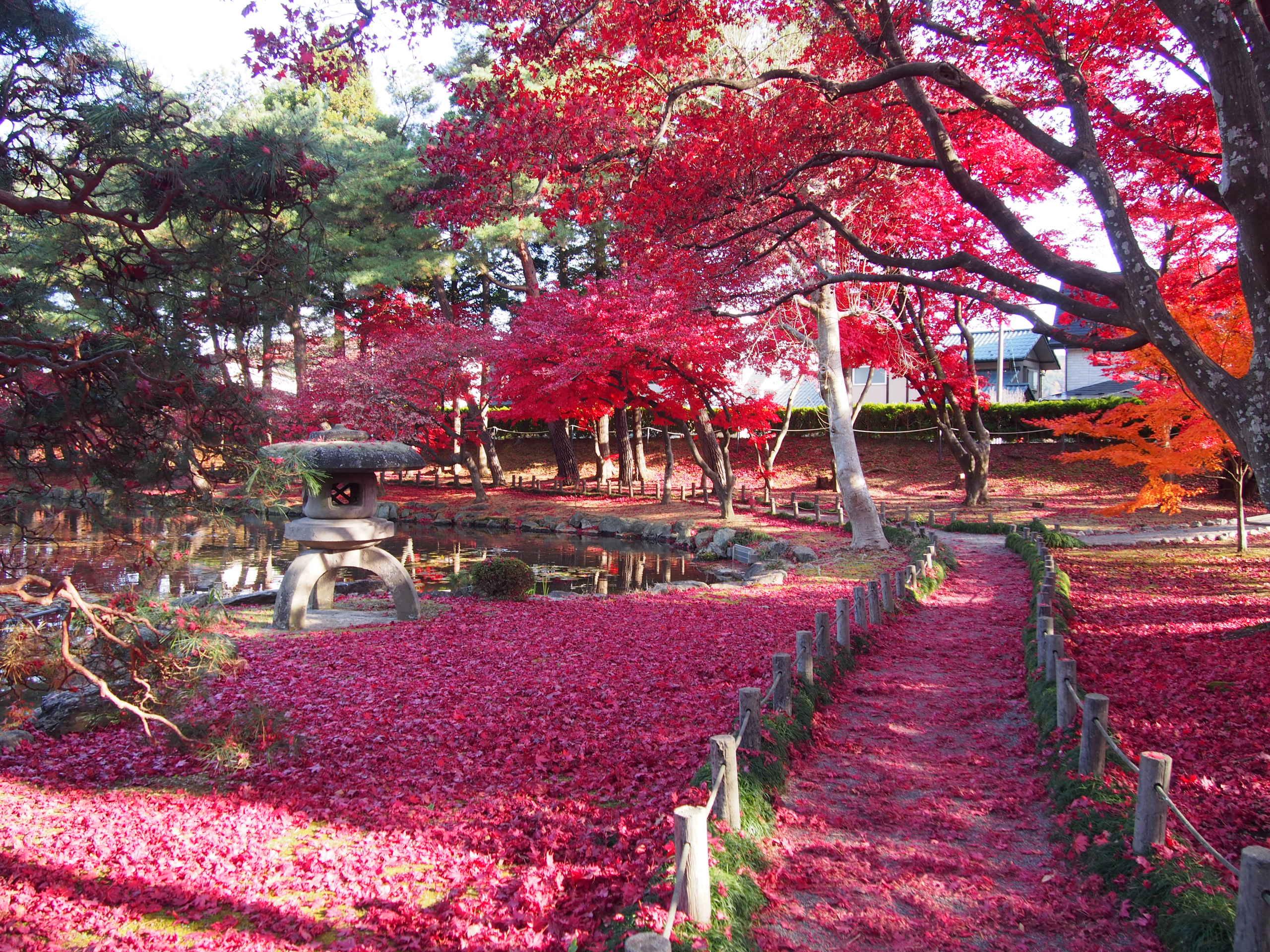 旧南部氏別邸庭園の紅葉